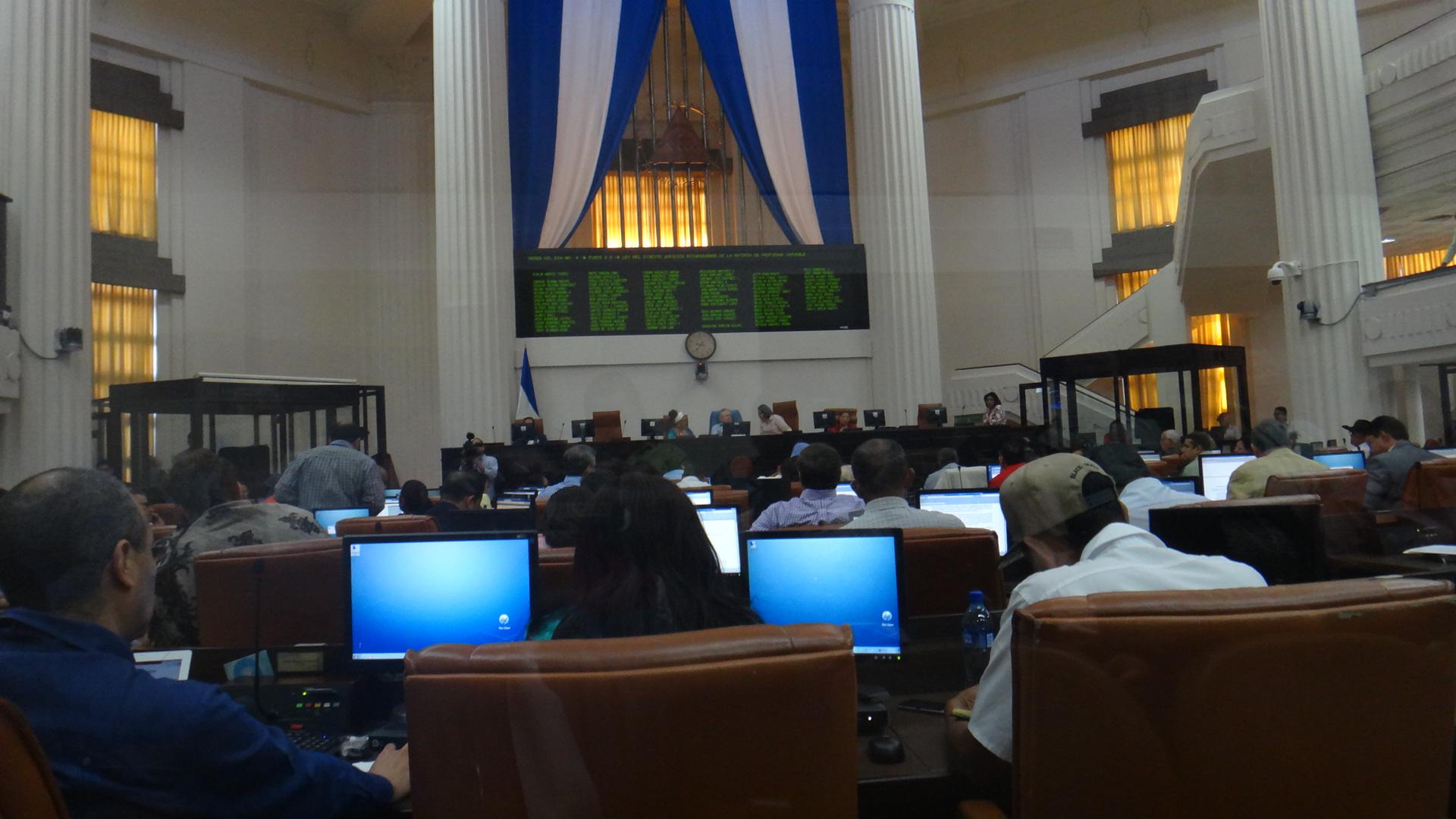 Plenario aprueba por unanimidad el Digesto Jurídico de Propiedad Inmueble